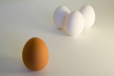 racism eggs